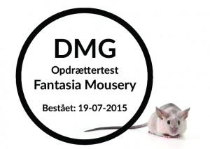 Fantasia Mousery copy