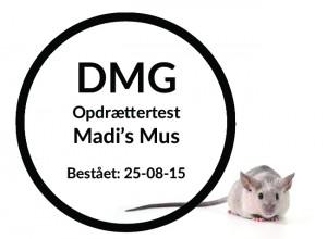 Madi's mus copy